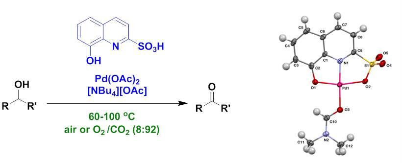 NO ligands